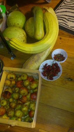 légumes Aude et Tarn 2